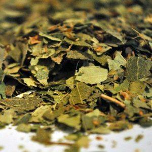 -Abedul-Hojas-Trit.-Betula-Alba-plantasmedicinalesagranel