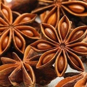 Anis-Estrellado-Illicium-verum-plantasmedicinalesagranel