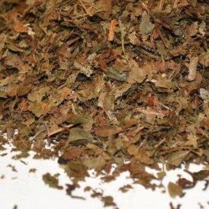 Arandanos-hojas-Vaccinium-myrtillus-plantasmedicinalesagranel
