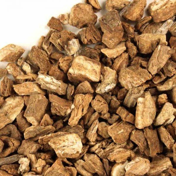 Bardana-raiz-trit.-Arctium-Lappa-plantasmedicinalesagranel