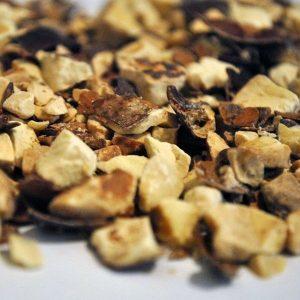 Castana-de-Indias-Fruto-Trit.-Aesculus-hippocastanum.-plantasmedicinalesagranel