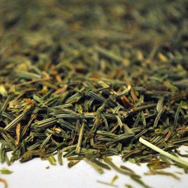 Cola-de-Caballo-plantasmedicinalesagranel