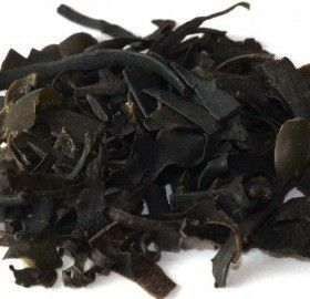 Fucus-Alga-Fucus-Vesiculosus-plantasmedicinalesagranel