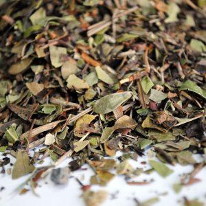 Gayuba-plantasmedicinalesagranel