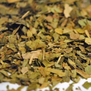 Ginkgo-Hojas-Trit.-Ginkgo-Biloba-plantasmedicinalesagranel