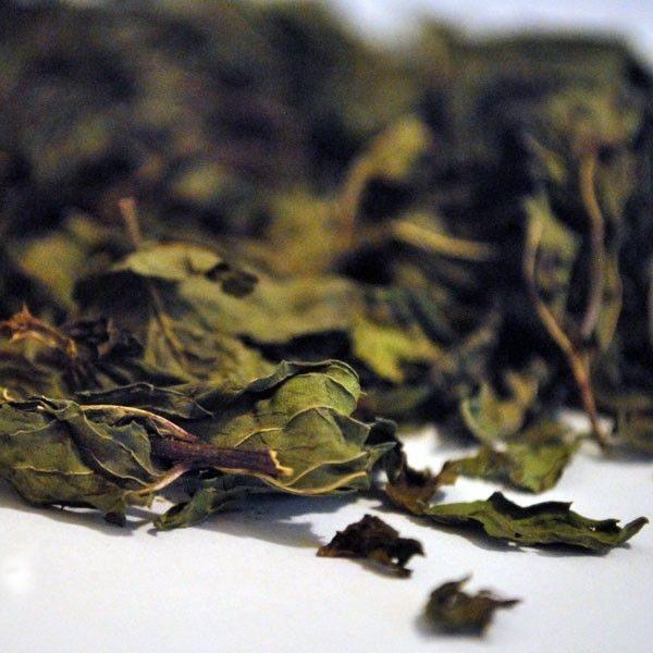 Hierbabuena-hojas-Mentha-Spica-plantasmedicinalesagranel