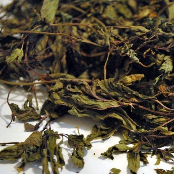 Menta-Hojas-Mentha-Piperita-plantasmedicinalesagranel