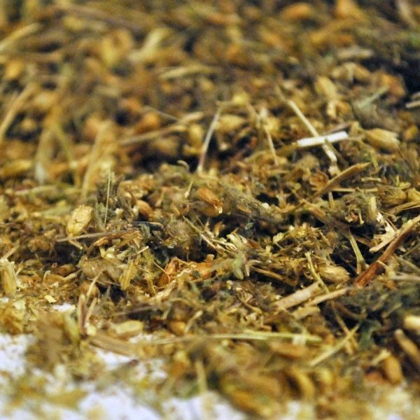 Milenrama-Flor-Achillea-millefolium.-plantasagranel