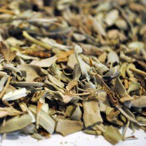 Salvia-Hojas-Salvia-officinalis-plantasmedicinalesagranel