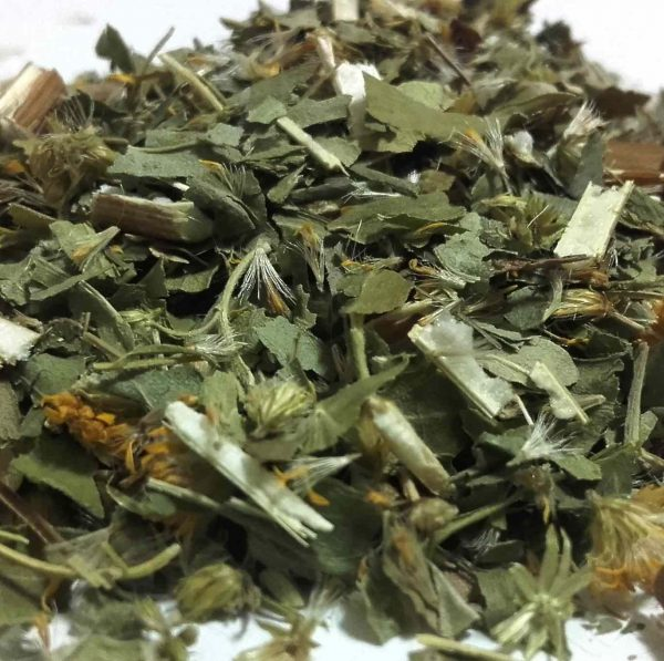 Vara-de-Oro-o-Solidago-Solidago-virgaurea-plantasmedicinalesagranel